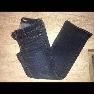 Artist stretch dark flared jeans